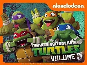 Amazon.com: Watch Teenage Mutant Ninja Turtles Volume 5 ...
