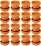 Juvale Small Terra Cotta Pots with Saucer- 16-Pack Clay Flower Pots with Saucers, Mini Flower Pot Planters for Indoor…