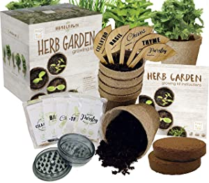 Hapinest Indoor Herb Garden Growing Seed Starter Kit