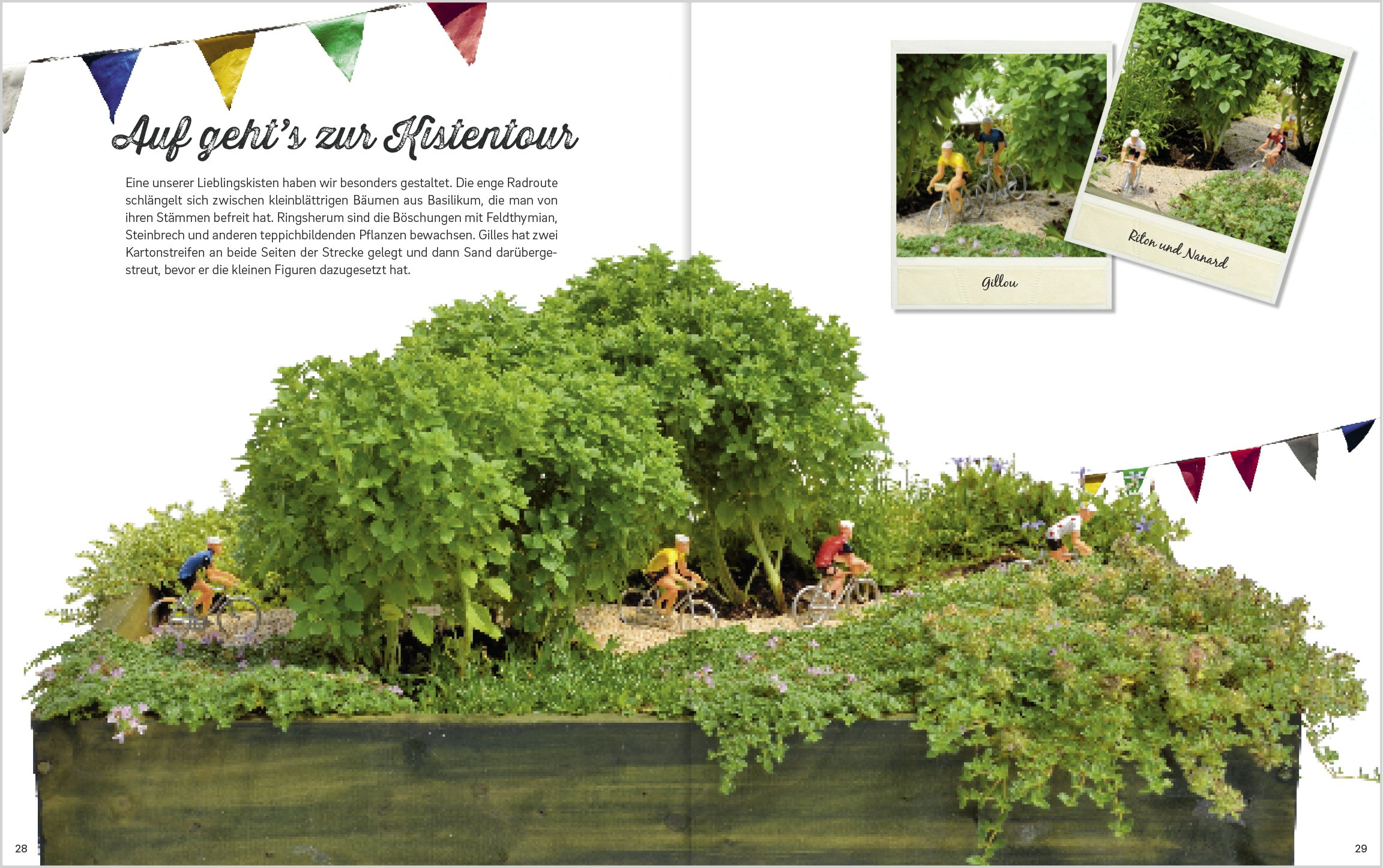 Gärtnern in Weinkisten: Mini-Landschaften in überraschenden ...
