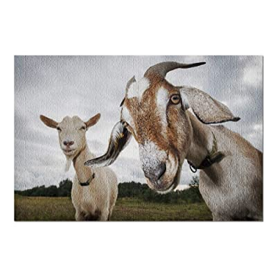 Two Funny Goats Look at The Camera on an Overcast Day 9019029 (Premium 1000 Piece Jigsaw Puzzle for Adults, 20x30, Made in USA!): Toys & Games