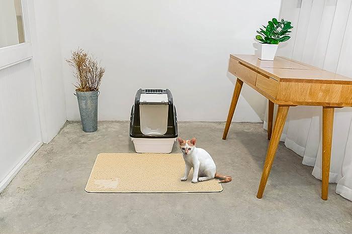 Using a Cat Litter Mat