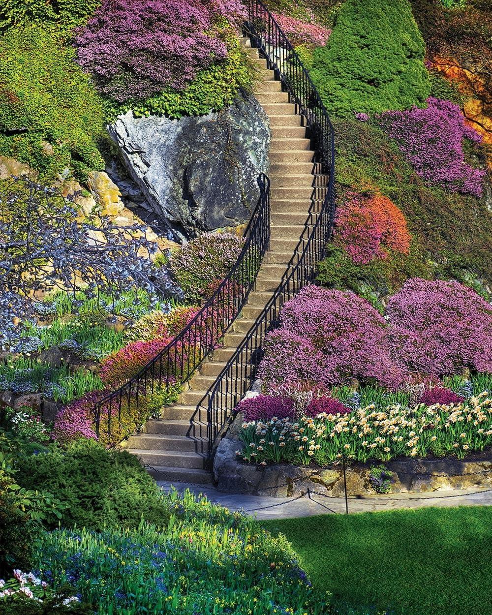 Springbok's 500 Piece Jigsaw Puzzle Garden Stairway, Multi