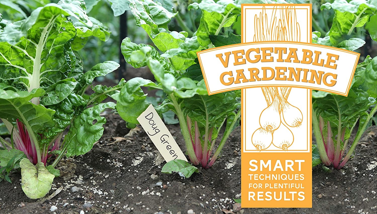 Vegetable Gardening: Smart Techniques for Plentiful Results