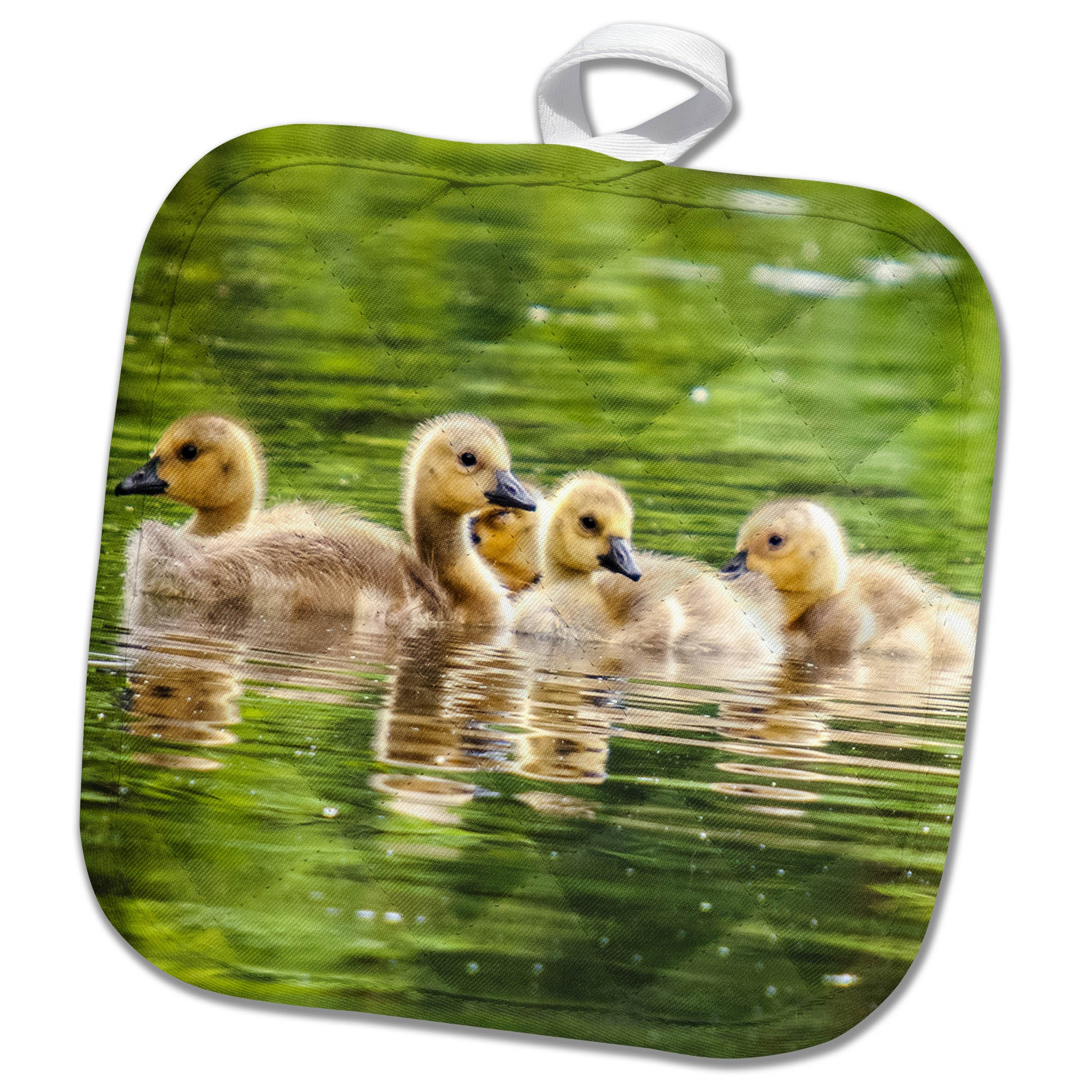 3dRose a Group of Goslings Swimming in The Lake Animal Goose Pot Holder, 8 x 8, White