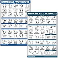 QuickFit 2 Pack - Dumbbell Workouts and Medicine Ball Exercise Posters - Set of 2 Laminated Charts - Dumbbell and Medicine Ball Exercise Routine