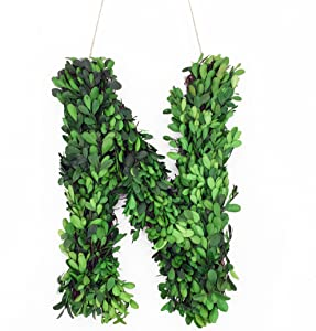 "Modern Home 12"" Real Preserved Boxwood Monogram Wreath Letters - N"