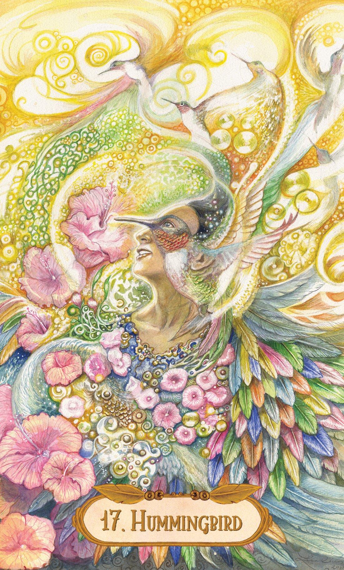 The Winged Enchantment Oracle Deck: Lesley Morrison, Lisa Hunt:  9781572816732: Amazon: Books
