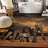 """ALAZA Sunset African Elephant Area Rug for Living Room Bedroom 5'3""""x4'"""