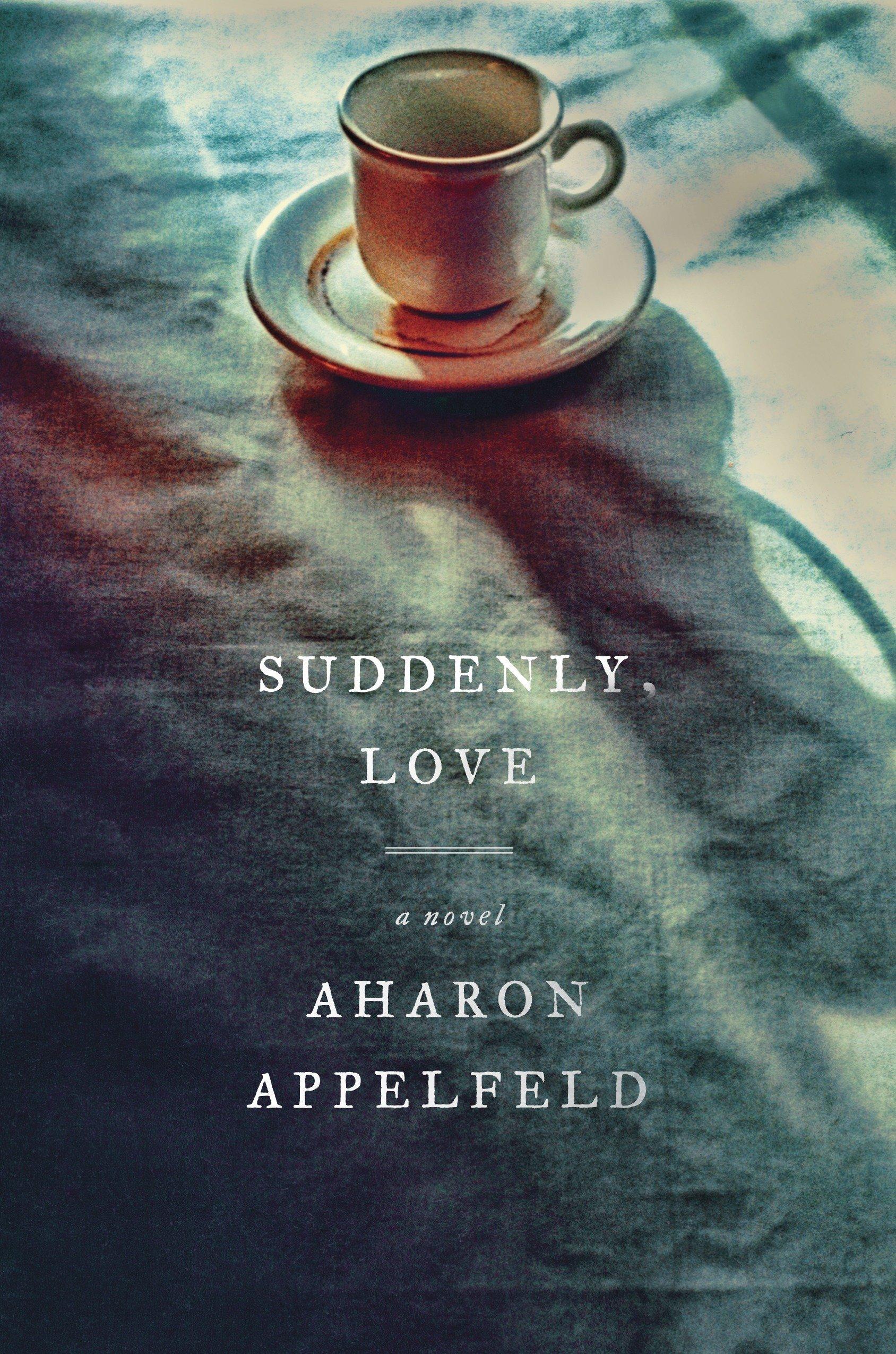 Suddenly, Love: A Novel PDF