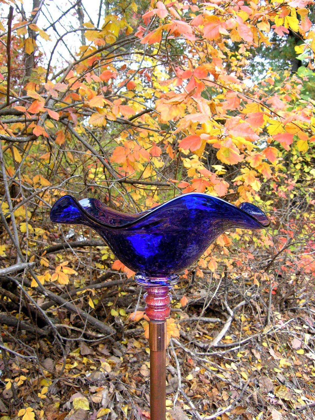 Cobalt Blue Hand Blown Glass Butterfly Feeder with 36'' Copper Stake by Andrew Holmberg