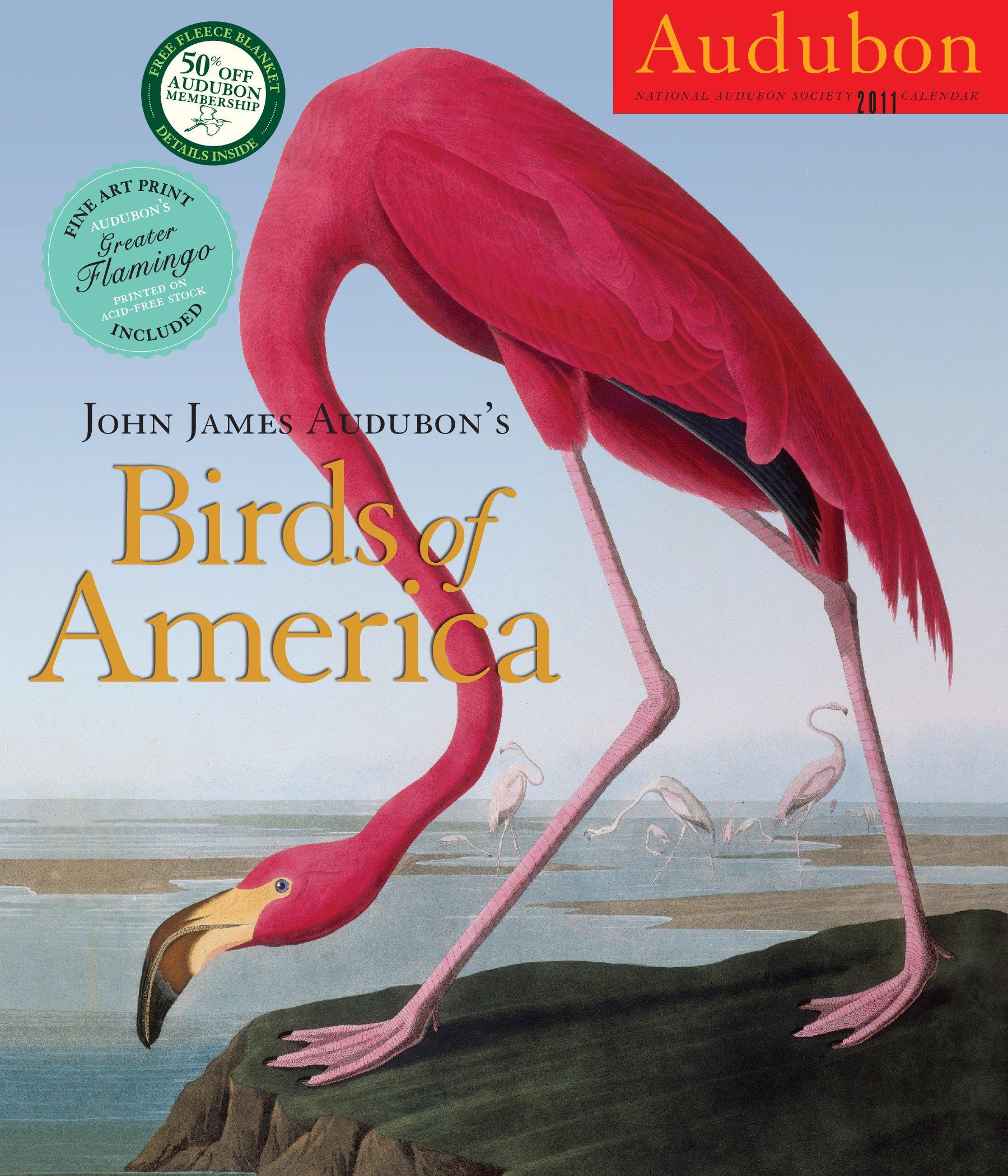 James Audubons Birds America Calendar product image