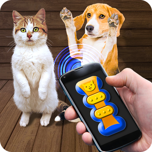 Training Cat Dog Clicker Simulator