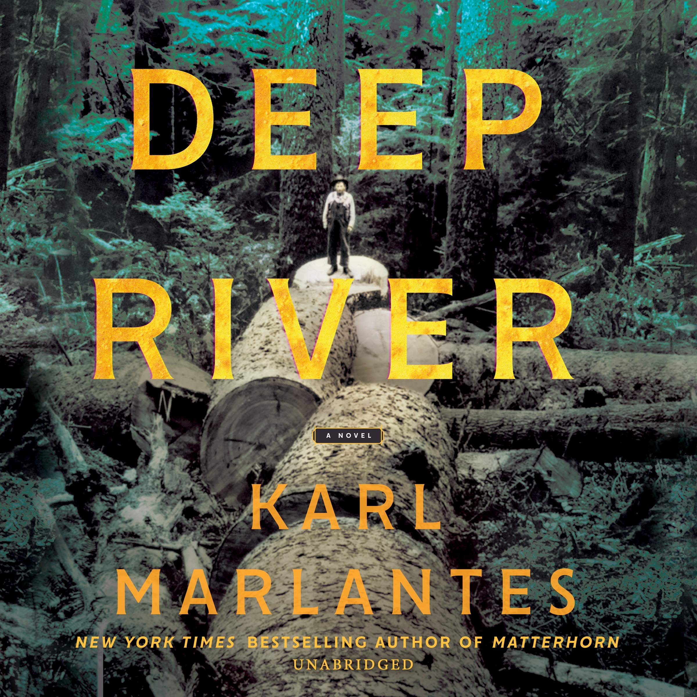 Deep River Novel Karl Marlantes