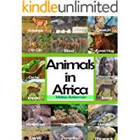 Animals In Africa: A Picture Book For Kids To Learn African Animals