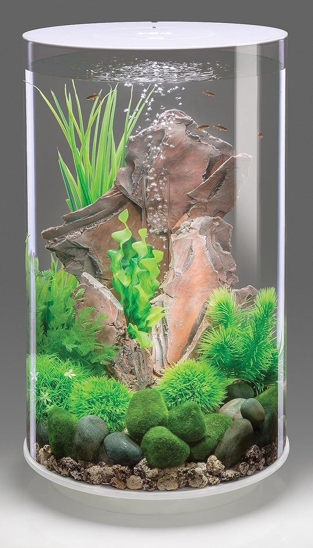 biOrb Tube weiß MCR LED beleuchtetes Aquarium–30L