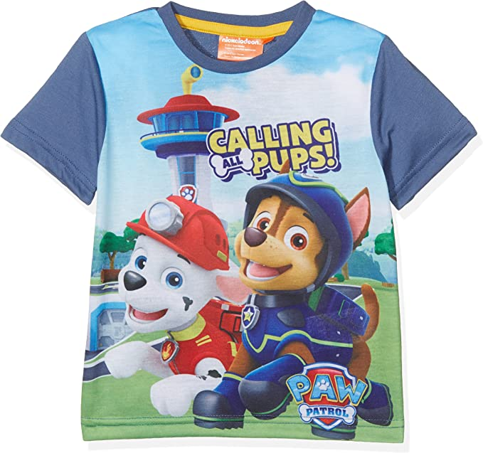 Paw Patrol T Shirt Girls Short Sleeve Tee T-Shirt Top Ages 18 Months To 6 Years
