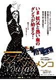 ジプシー・フラメンコ [DVD]
