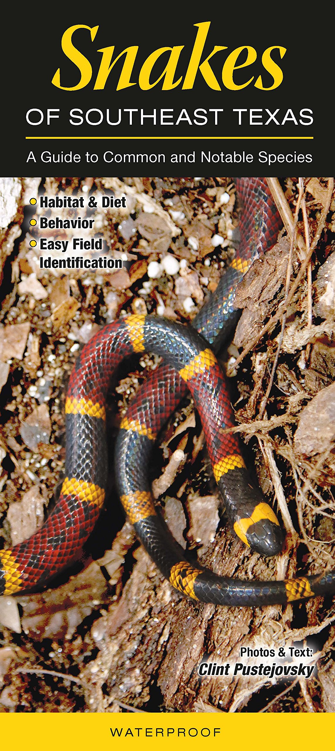 Snakes of Southeast Texas: A Guide to Common & Notable Species ...