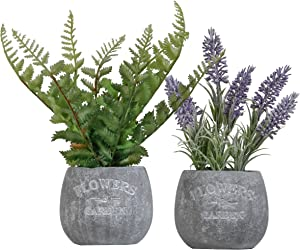 Valery Madelyn Artificial Lavender Plants and Greenery Fern Leaves in Pots,Rustic Home Decor Flower Arrangements for Kitchen,Office and Table Centerpieces Decorations