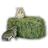 Heu 15kg Heuballen Futter Kaninchen Meerschweinchen Hase Heu Scheune