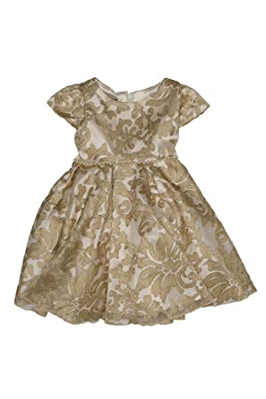 9bbcf9eed36fc Amazon.com  Biscotti Baby - Girl s Infant Royal Treatment Lace Dress ...