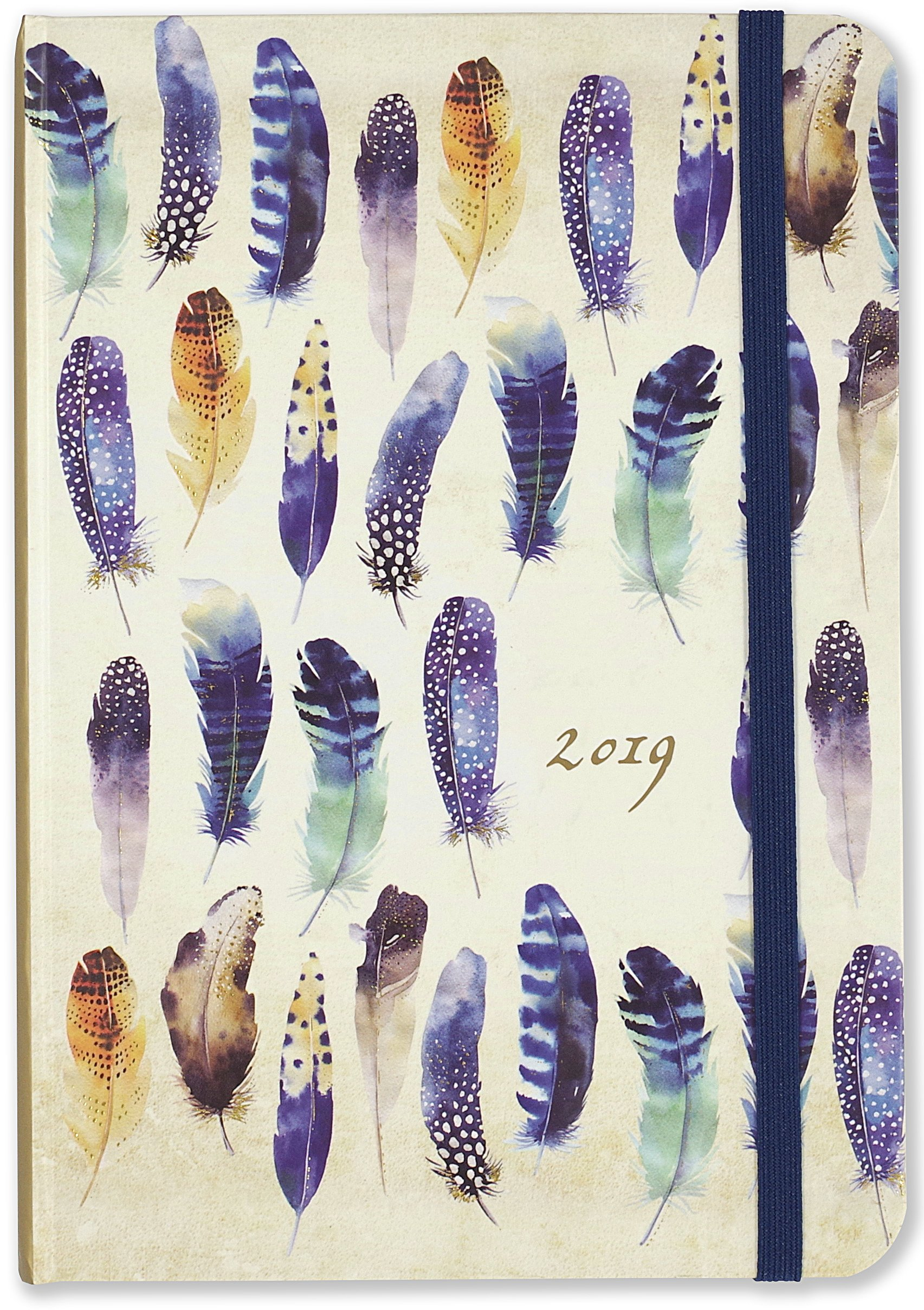2019 Watercolor Feathers Weekly Planner (16-Month Engagement Calendar) PDF