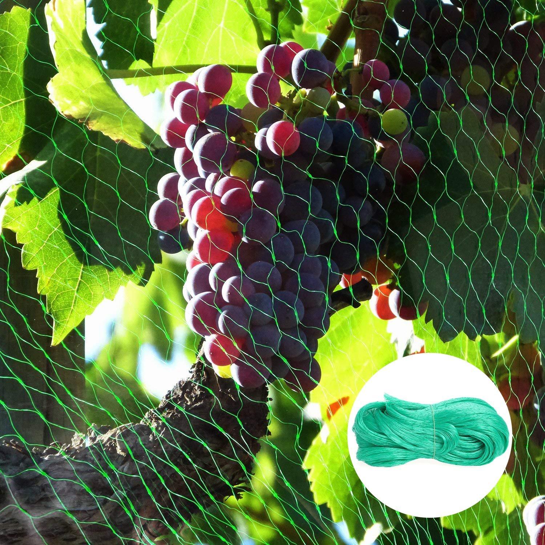 4m X 10m, Vert Rain Queen 4Mx10M Filet de Protection Jardin Anti-Oiseaux Nylon avec 100pcs Plastique Liens Maille Fruit Arbre Cerise Grillage Bassin Piscine Balcon