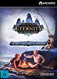 Pillars of Eternity - Expansion Pass [PC/Mac Code - Steam]