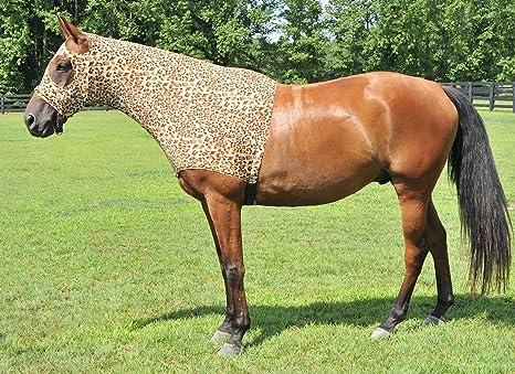 301-P Pony Bci Flat Stand Martingale