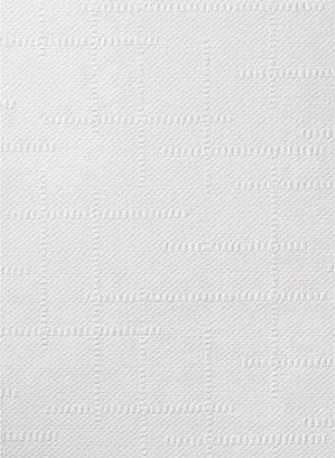 1 x ERFURT Anaglypta RD 0648 Howard 10,05 x 0,53 m