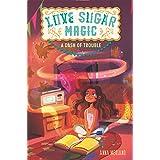 Love Sugar Magic: A Dash of Trouble (Love Sugar Magic, 1)