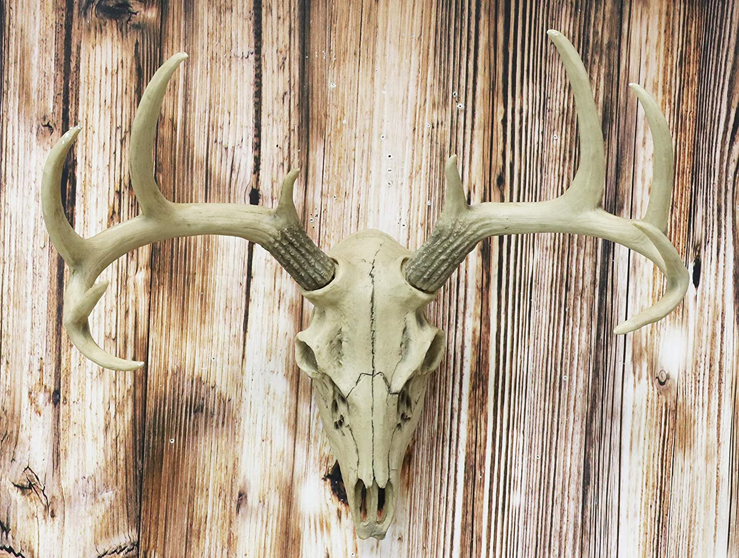 """Ebros 18.5"""" L 10 Point Buck Head Wall Mount Resin Stag Deer Skull Antler Rack Bust Hunting Cabin or Lodge Decor Skull Antlers Home Accent"""