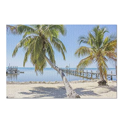 Florida Keys - Palm Trees on Beach 9024349 (Premium 1000 Piece Jigsaw Puzzle for Adults, 20x30, Made in USA!): Toys & Games