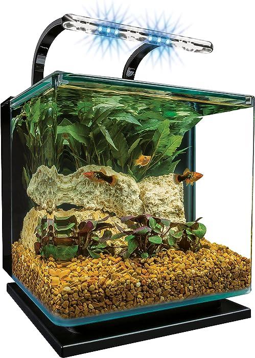 Top 10 Desktop Fish Tank With Filter And Light