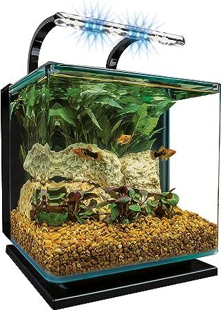 Amazon Com Marineland Contour 3 Aquarium Kit 3 Gallons Rounded Glass Corners Includes Led Lighting Pet Supplies Pet Supplies