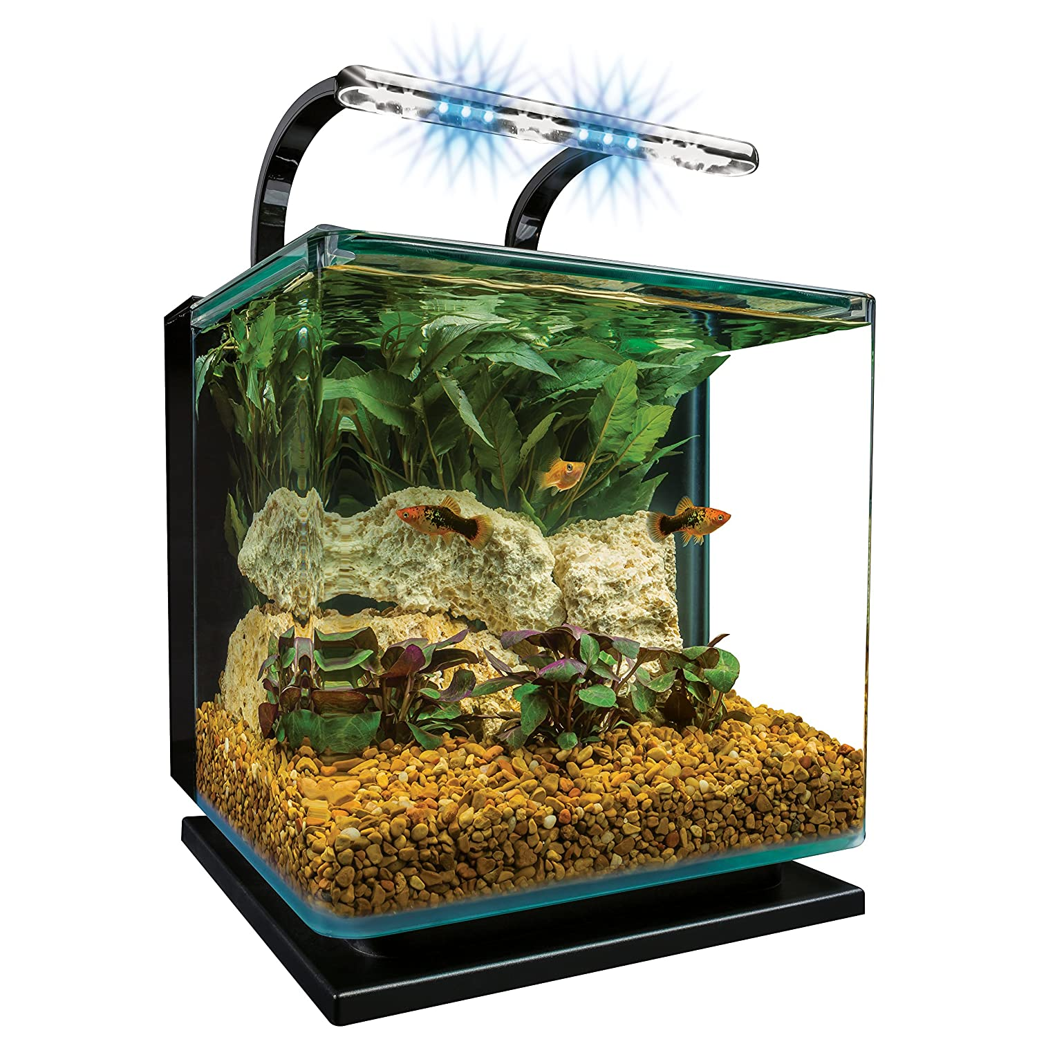 Fish aquarium just dial -