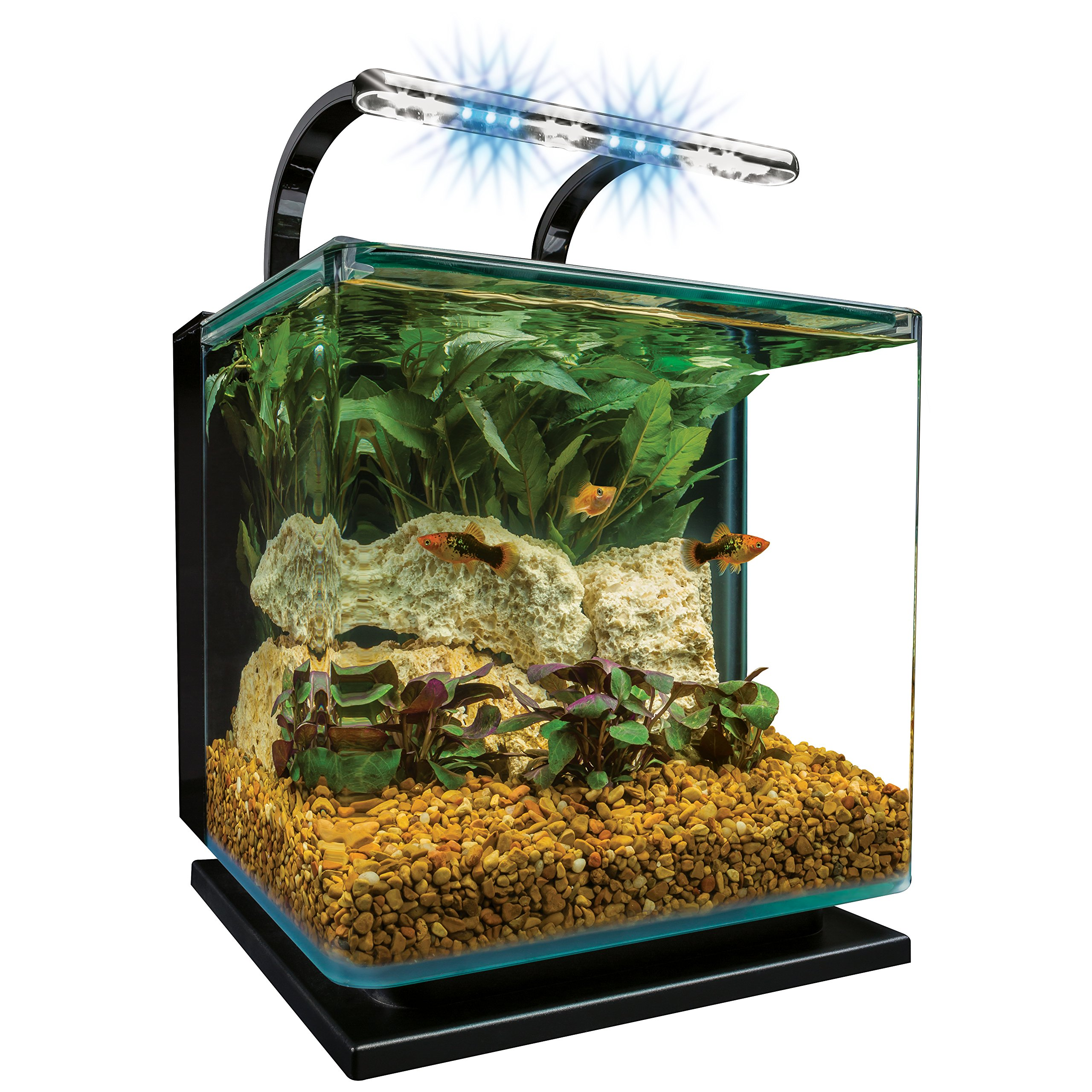 Marineland Contour Glass Aquarium Kit with Rail Light, 3-Gallon by MarineLand