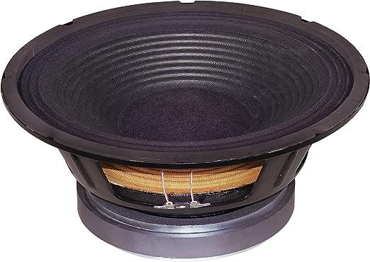 Altavoces PA caja del subwoofer 300 mm 250W 8 Ohm: Amazon.es: Hogar
