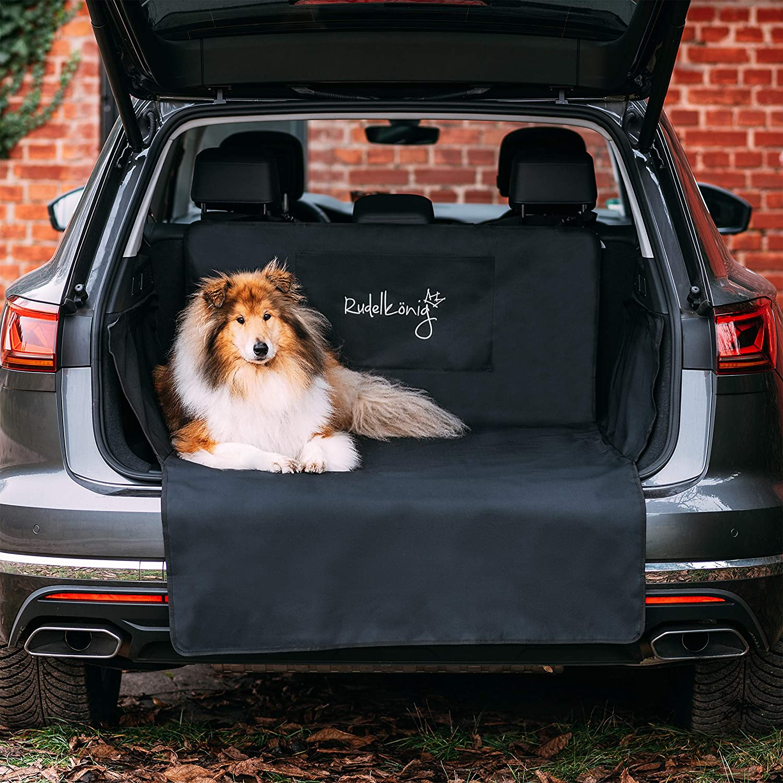 Rudelkönig Kofferraumschutz Mit Ladekantenschutz Wasserabweisend Pflegeleicht Universale Schondecke Mit Aufbewahrungstasche Autoschondecke Für Hunde Auto