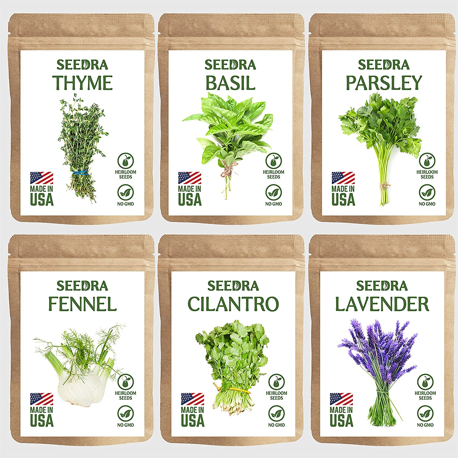 SEEDRA 6 Herb Seeds Variety Pack Indoor and Outdoor Planting - 3000+ Seeds - Non GMO and Heirloom - Basil, Thyme, Lavender, Parsley, Fennel, Cilantro