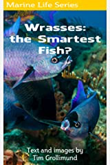 Wrasses: the Smartest Fish? Kindle Edition