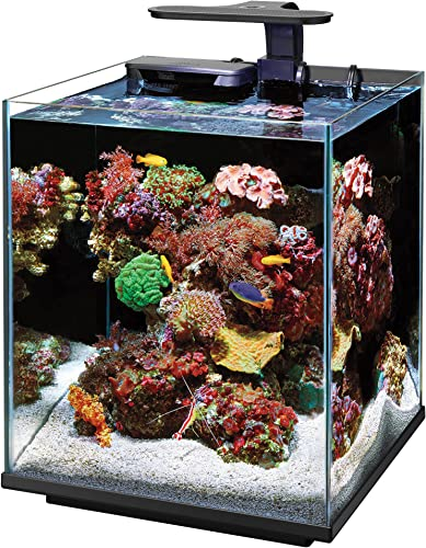 coralife-marine-aquarium-clip-on-led-light