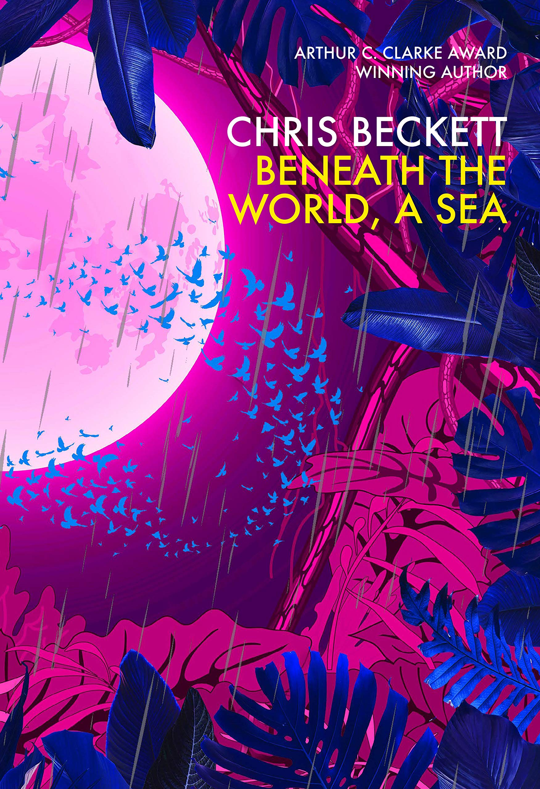 Cover of Beneath the World, A Sea by Chris Beckett