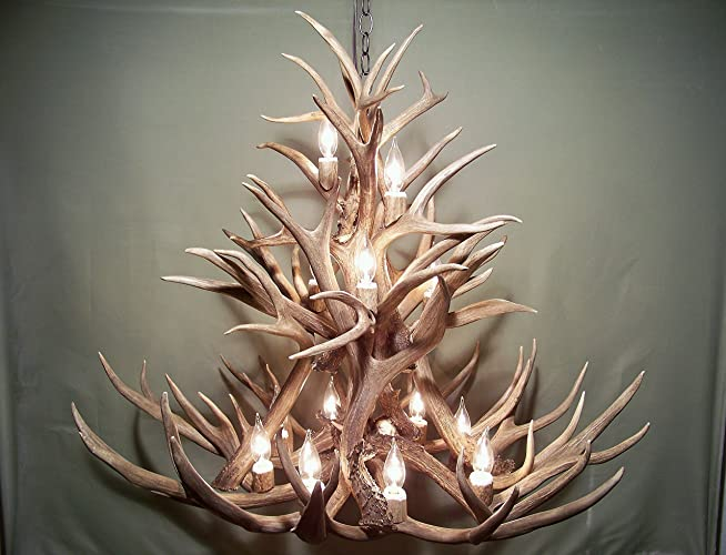 Amazon real antler chandelier 13 lights shed antler art real antler chandelier 13 lights shed antler art elk covered sockets handmade extra mozeypictures Gallery