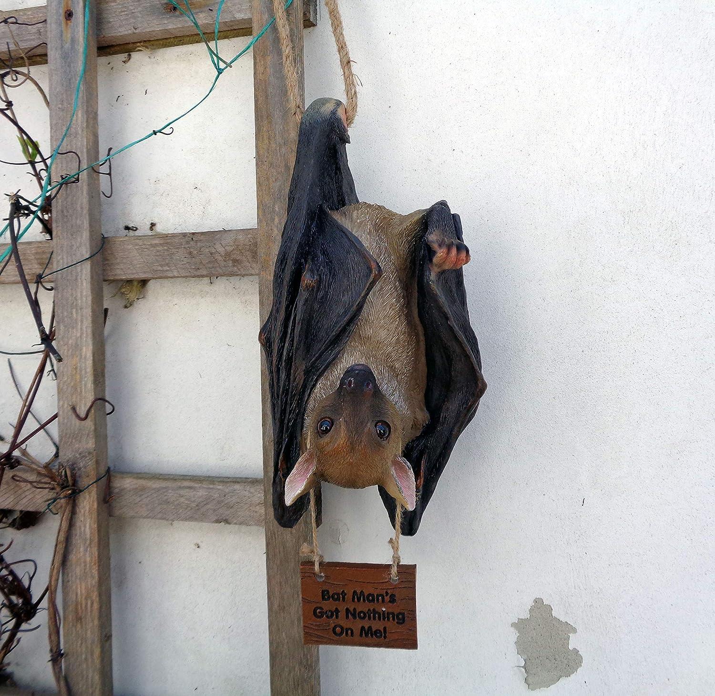 Ardilla roja arenosa Garden Animals Collection Colecci/ón de Animales de jard/ín para Padres