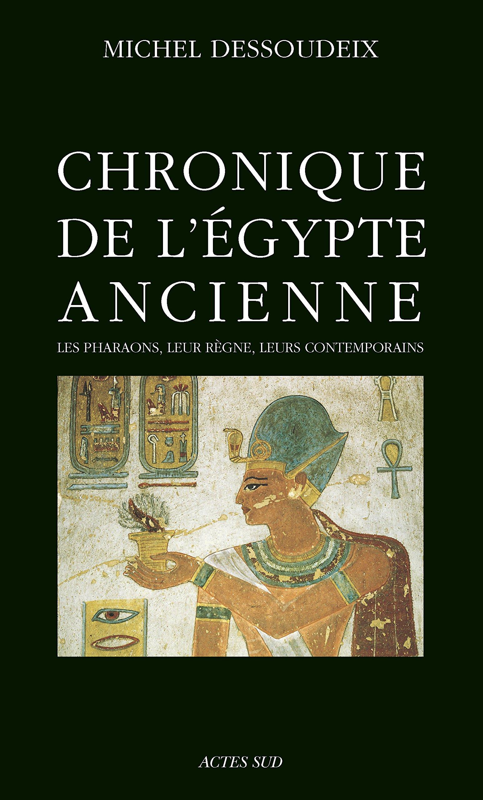 Chronique de l'Egypte ancienne: Les pharaons, leur règne, leurs contemporains (ESSAIS SCIENCES)