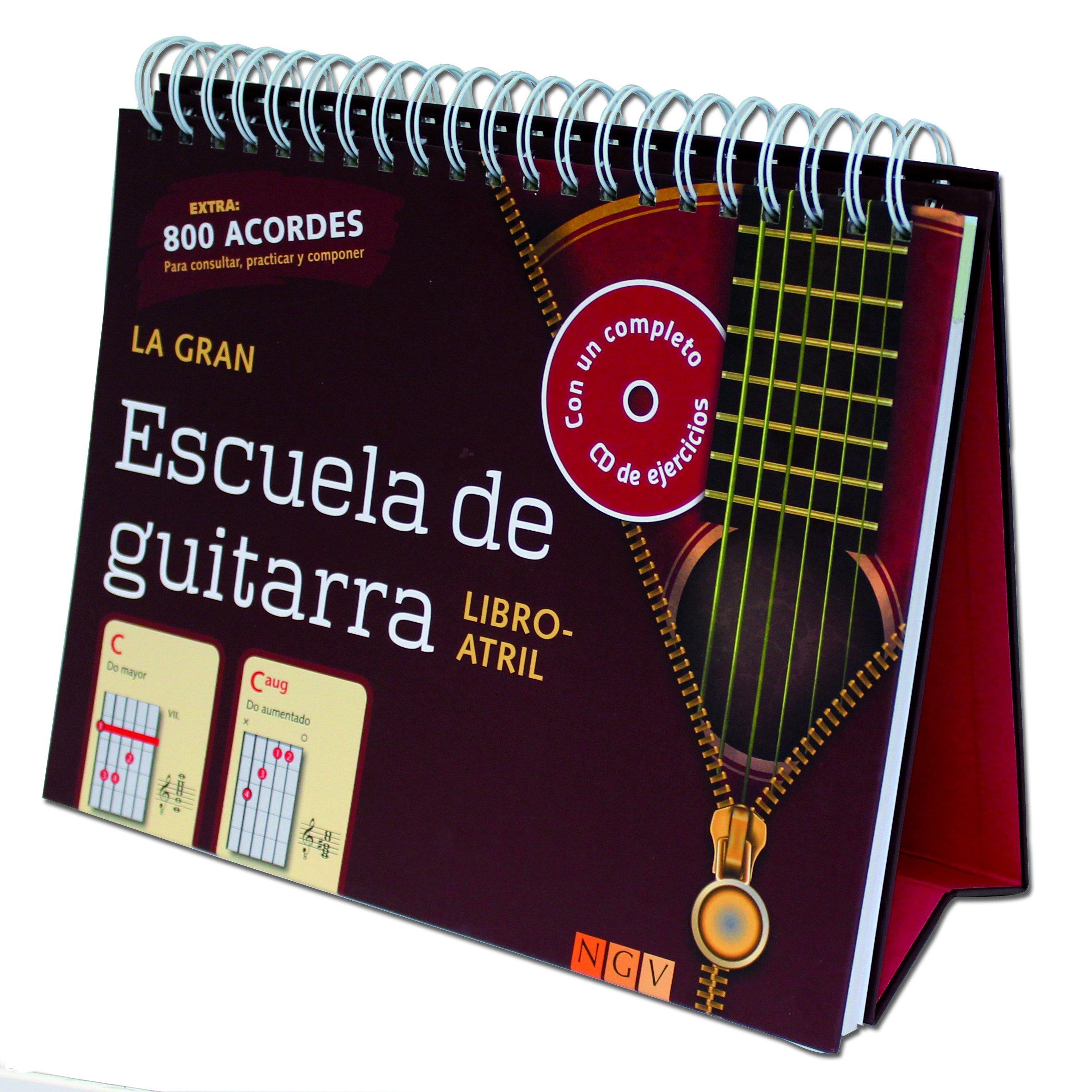 LA GRAN ESCUELA DE GUITARRA NGV (Spanish) Hardcover – 2013
