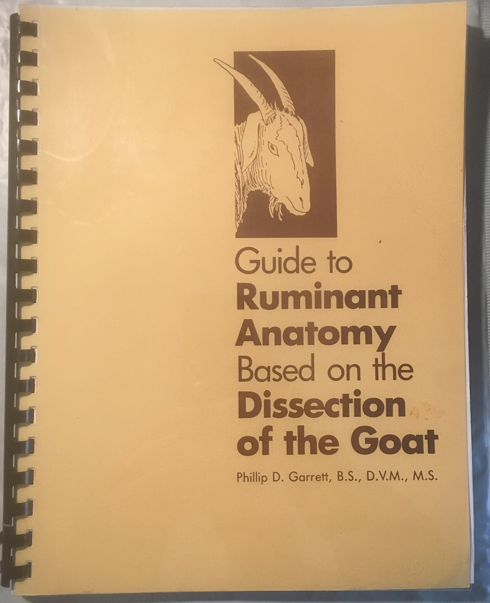 Buy Guide to Ruminant Anatomy Based on the Dissection of the Goat ...