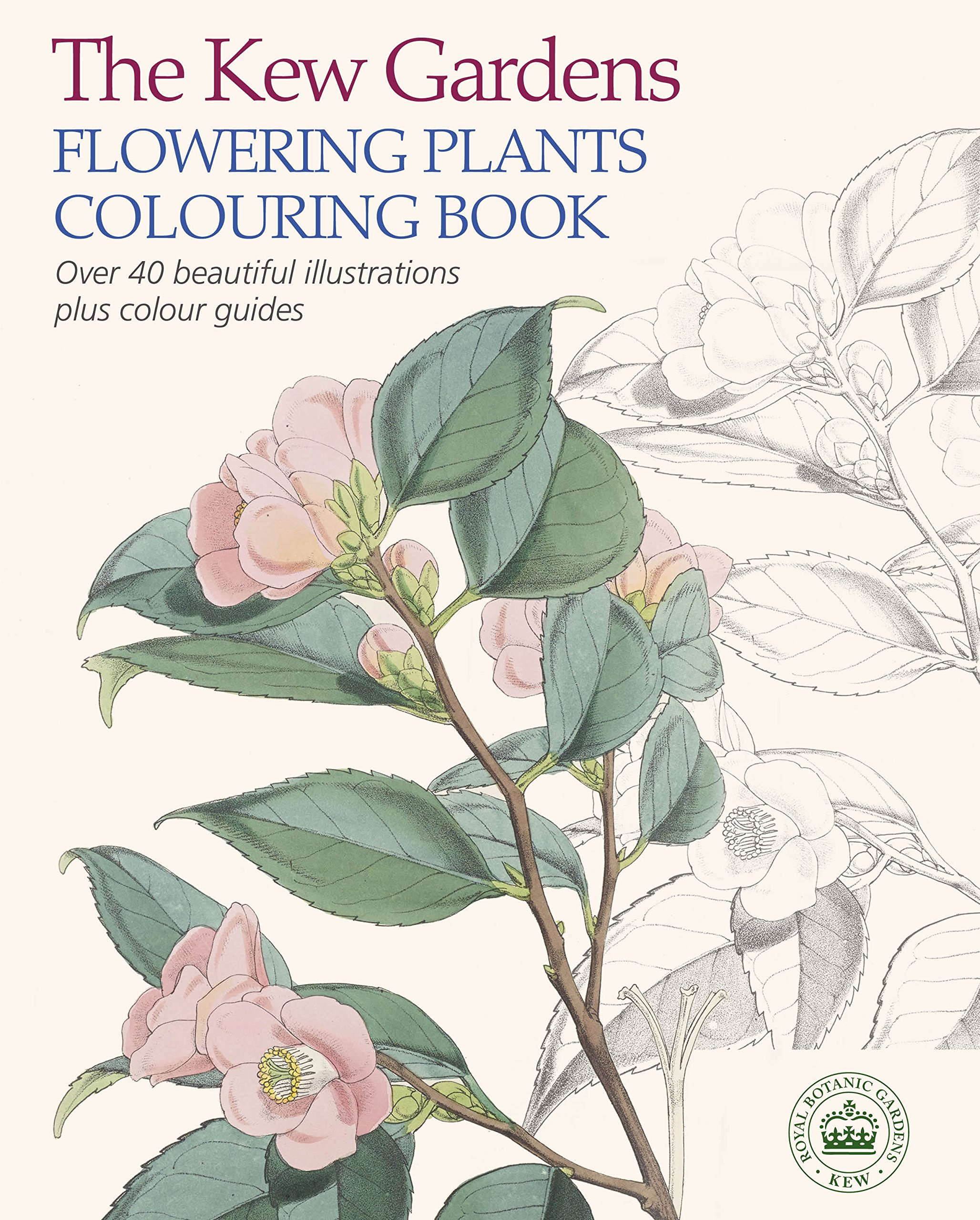 The Kew Gardens Flowering Plants Colouring Book Over Beautiful
